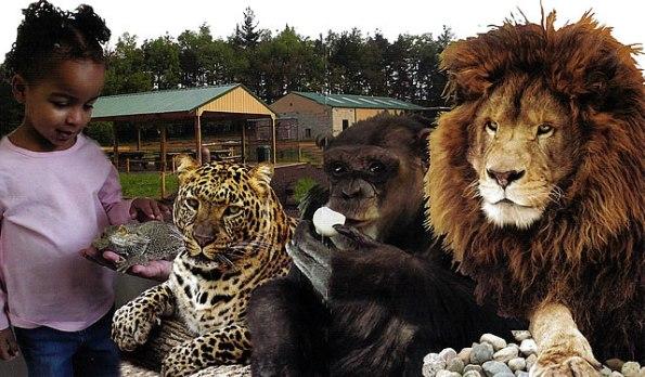 Black Pine Animal Park