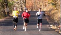 Taterbug Runners