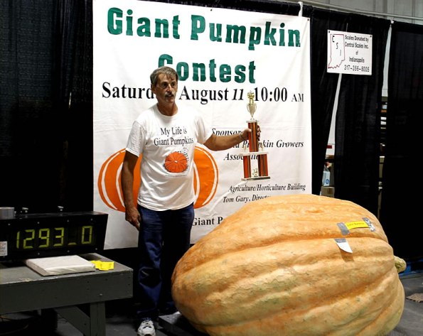 State Fair Giant Pumpkin Contest