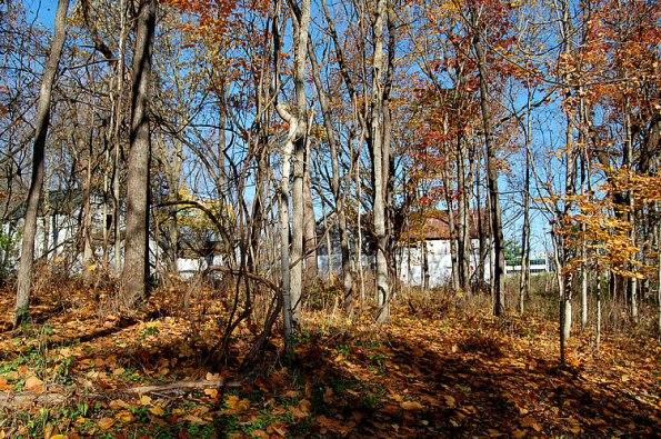 Oliver's Woods Nature Preserve