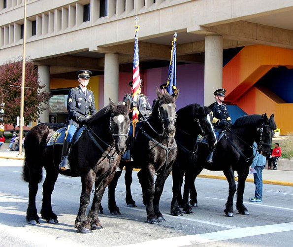 Veterans Day Parade, Nov. 11.