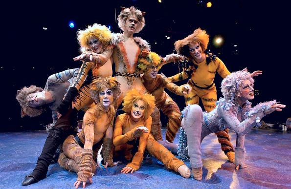 'Cats' at Beef and Boards Dinner Theatre