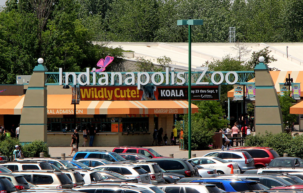 A Great Day at the Indianapolis Zoo | Around Indy
