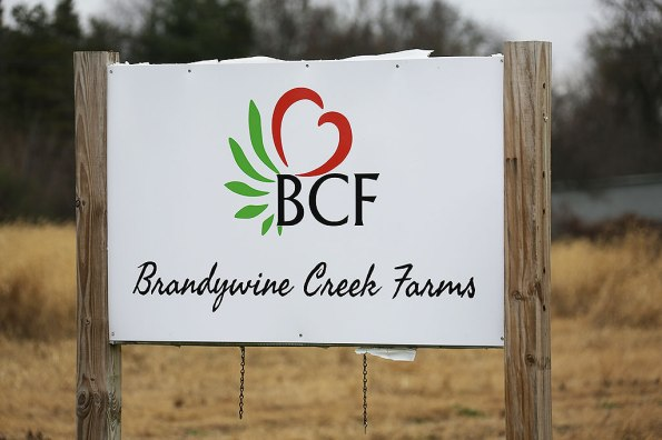 brandywine-creek-farms-02